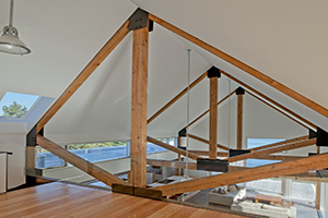 Exposed Trusses